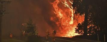 Лісові пожежі в Австралії: 17 загиблих, десятки зниклих безвісти