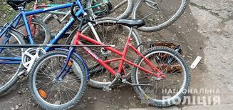 На Свалявщині затримано неповнолітніх крадіїв
