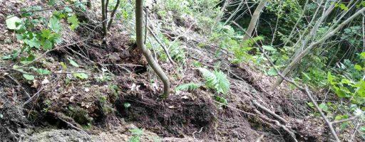На Закарпатті зсув ґрунту загрожує житловому будинку