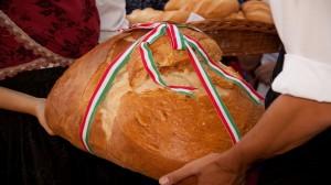 Закарпатські фермери долучаються до акції «Хліб угорців»